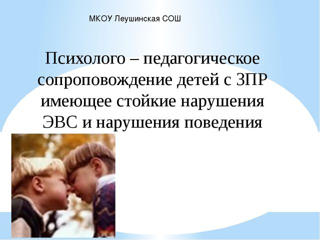 МКОУ Леушинская СОШ Психолого – педагогическое сопроповождение детей с ЗПР им...