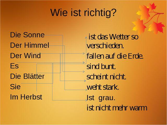 Wie ist richtig? Die Sonne Der Himmel Der Wind Es Die Blätter Sie Im Herbst i...