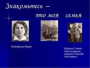 Знакомьтесь – это моя семья Пробабушка Мария Бабушка Галина Александровна Дед
