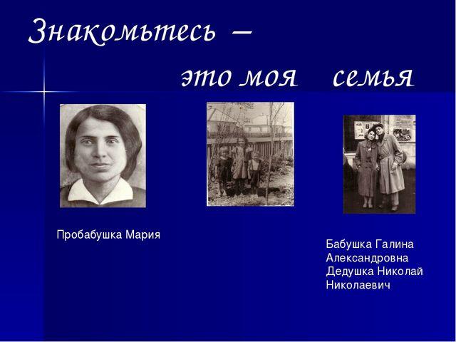 Знакомьтесь – это моя семья Пробабушка Мария Бабушка Галина Александровна Дед...