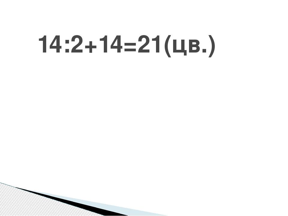 14:2+14=21(цв.)