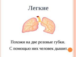 Легкие Похожи на две розовые губки. С помощью них человек дышит.
