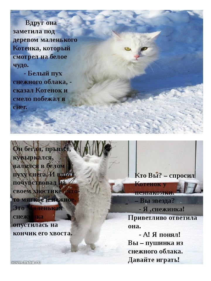 Вдруг она заметила под деревом маленького Котенка, который смотрел на белое...