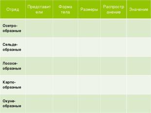 Отряд Представители Форма тела Размеры Распространение Значение Осетро-образ