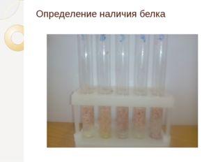 Определение наличия белка
