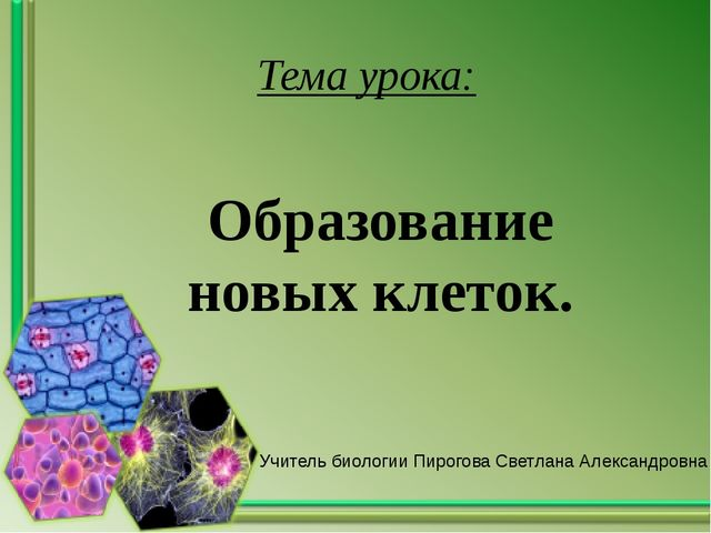 Тема урока: Образование новых клеток. Учитель биологии Пирогова Светлана Алек...