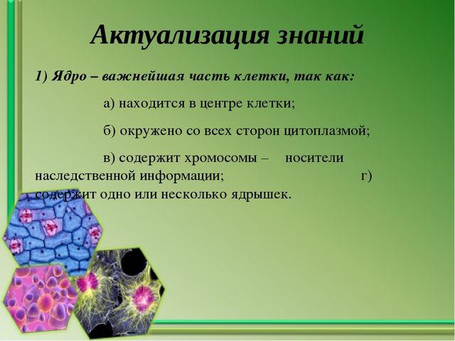 Актуализация знаний 1) Ядро – важнейшая часть клетки, так как: а) находится в...