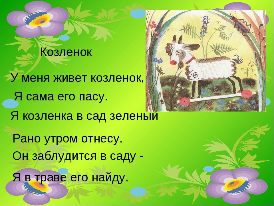 Козленок У меня живет козленок, Я сама его пасу. Я козленка в сад зеленый Ран...