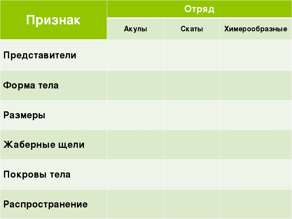 Признак Отряд Акулы Скаты Химерообразные Представители Форма тела Размеры Жа...