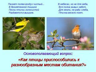 Пахнет полем воздух чистый... В безмятежной тишине Песни птички голосистой Ра