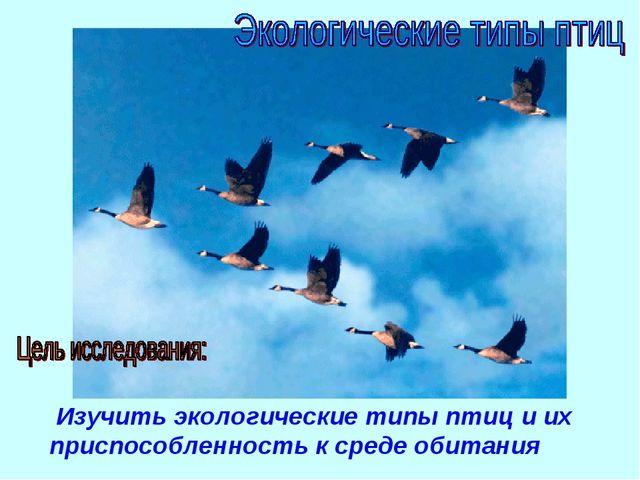 Изучить экологические типы птиц и их приспособленность к среде обитания