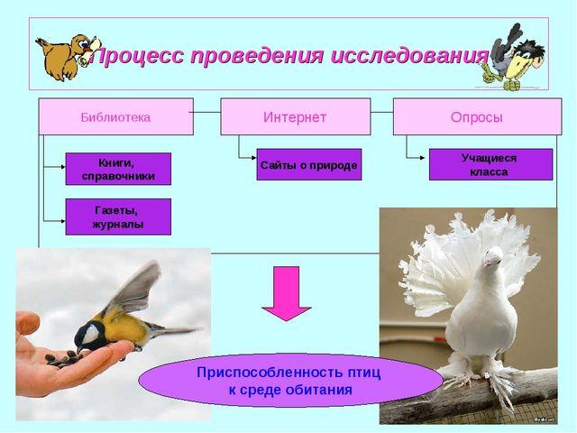 Процесс проведения исследования Библиотека Интернет Опросы Книги, справочники...