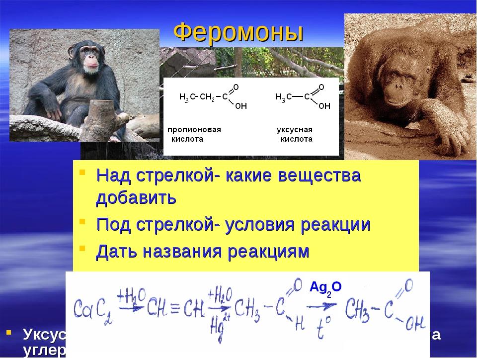 Феромоны Над стрелкой- какие вещества добавить Под стрелкой- условия реакции...