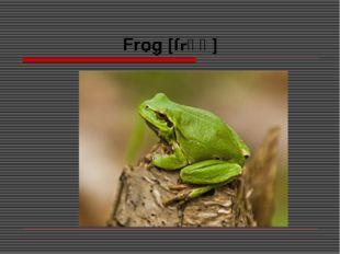 Frog [frɒɡ]