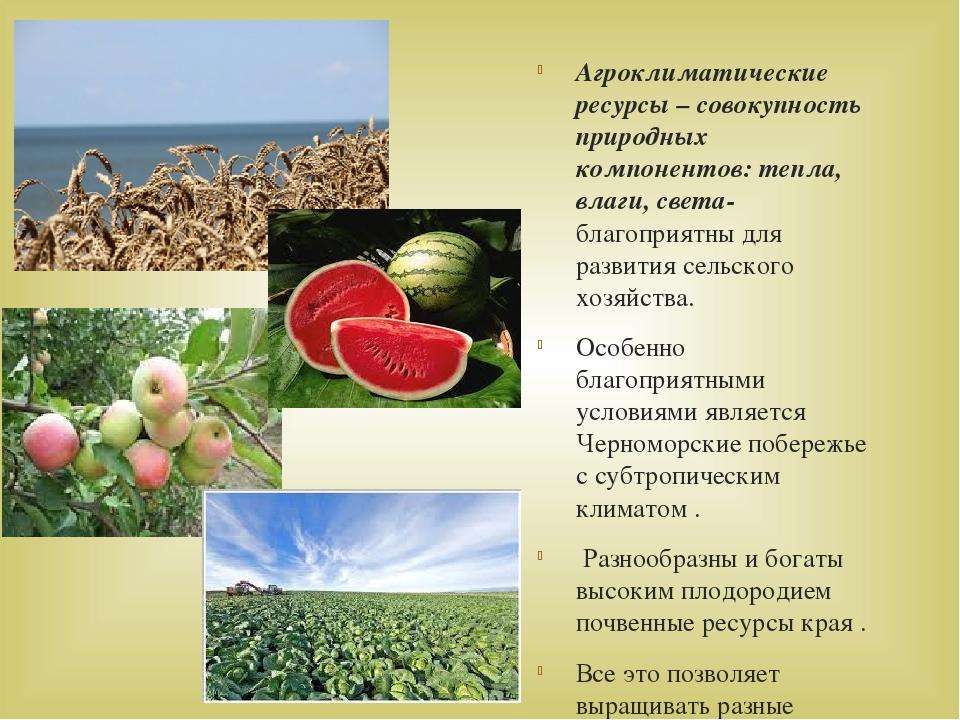 Агроклиматические ресурсы – совокупность природных компонентов: тепла, влаги,...