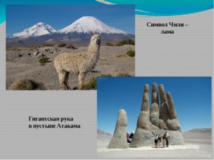 Символ Чили – лама Гигантская рука в пустыне Атакама