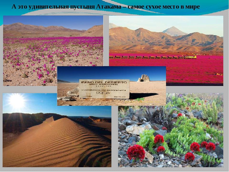 А это удивительная пустыня Атакама – самое сухое место в мире