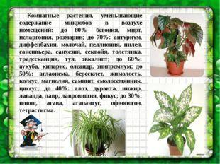 Комнатные растения, уменьшающие содержание микробов в воздухе помещений: до
