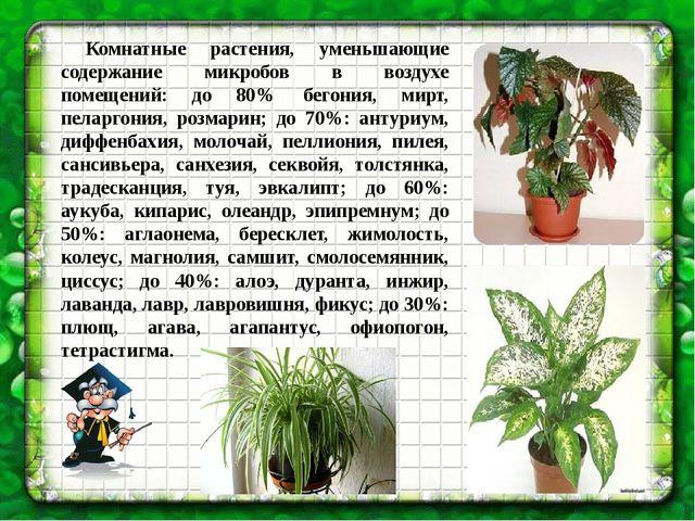 Комнатные растения, уменьшающие содержание микробов в воздухе помещений: до...