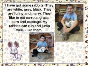 I have got some rabbits. They are white, grey, black. They are funny and merr