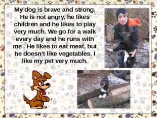 My dog is brave and strong. He is not angry, he likes children and he likes t