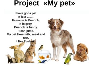 Project «My pet» I have got a pet. It is a ……. Its name is Pushok. It is grey