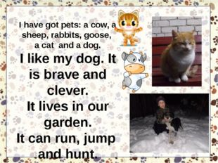 I have got pets: a cow, a sheep, rabbits, goose, a cat and a dog. I like my d