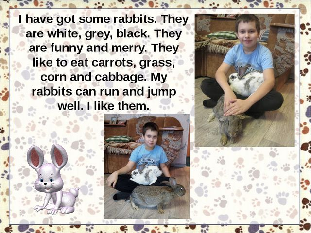 I have got some rabbits. They are white, grey, black. They are funny and merr...