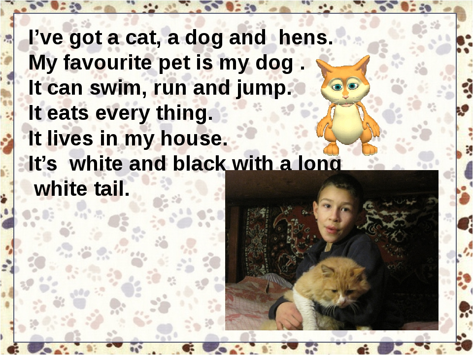 I've got a cat, a dog and hens. My favourite pet is my dog . It can swim, run...
