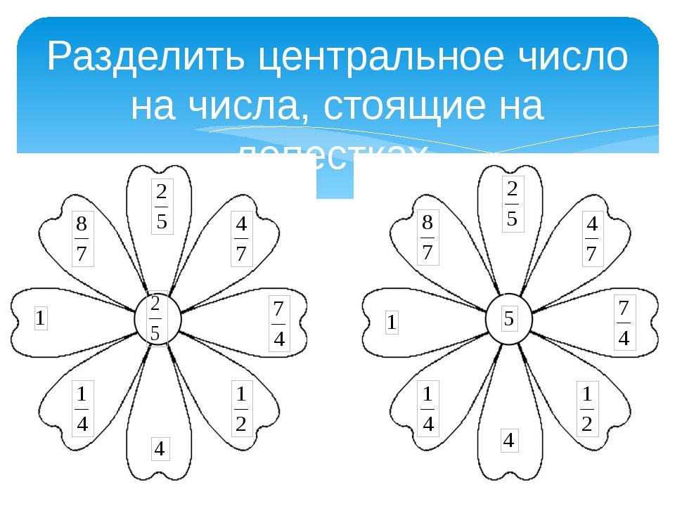 Разделить центральное число на числа, стоящие на лепестках
