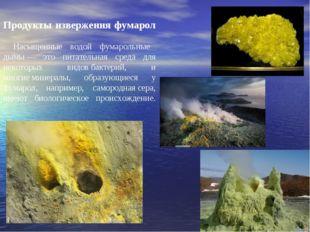 Продукты извержения фумарол Насыщенные водой фумарольные дымы— это питательн
