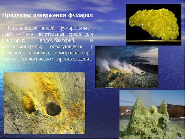 Продукты извержения фумарол Насыщенные водой фумарольные дымы— это питательн...