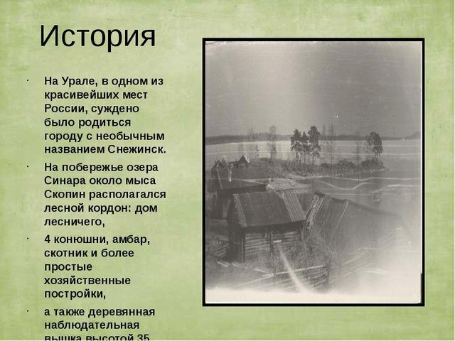 История На Урале, в одном из красивейших мест России, суждено было родиться г...