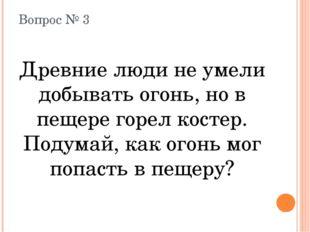 Вопрос № 3 Древние люди не умели добывать огонь, но в пещере горел костер. По