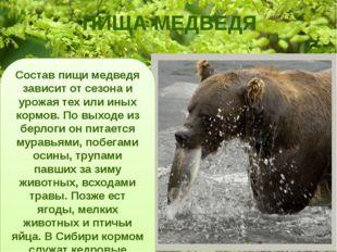 ПИЩА МЕДВЕДЯ Состав пищи медведя зависит от сезона и урожая тех или иных корм