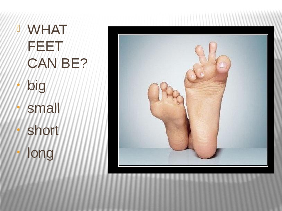 WHAT FEET CAN BE? big small short long