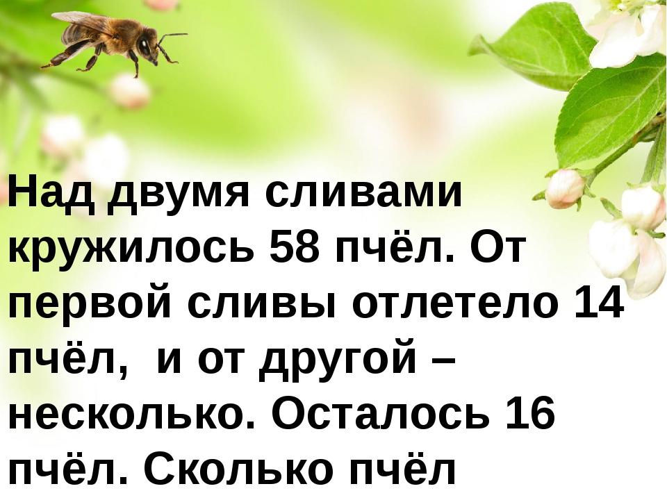 Над двумя сливами кружилось 58 пчёл. От первой сливы отлетело 14 пчёл, и от д...