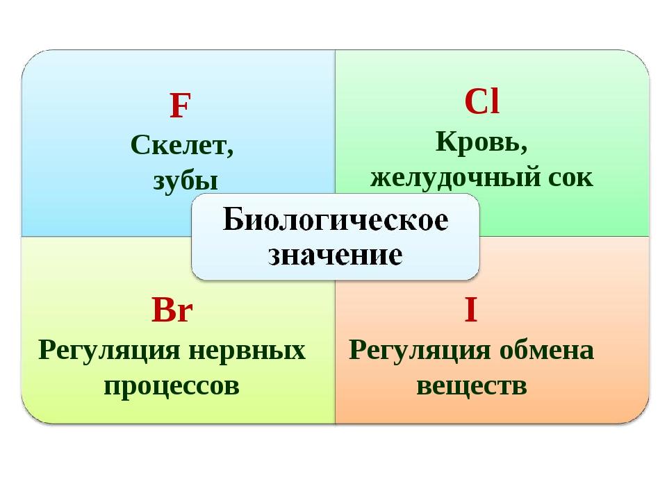 F Скелет, зубы Сl Кровь, желудочный сок Br Регуляция нервных процессов I Регу...