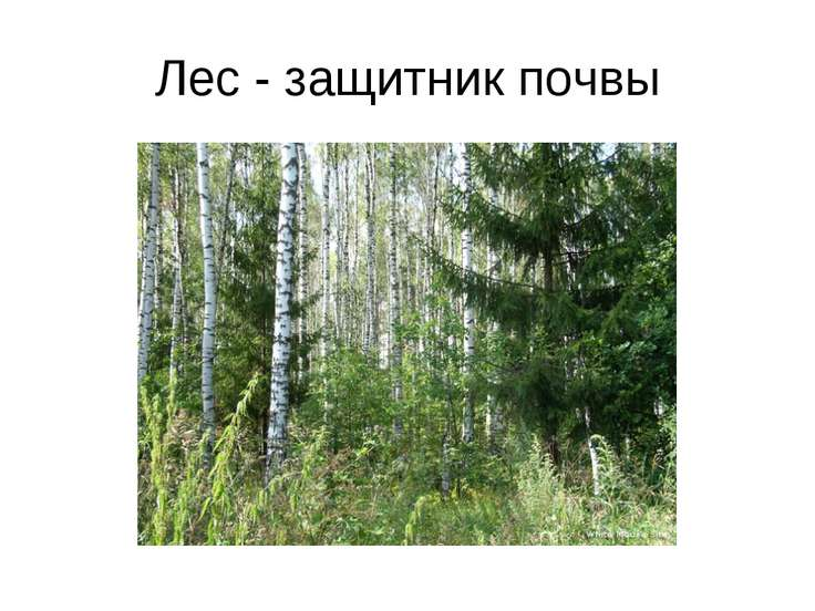 hello_html_m26f06009.jpg