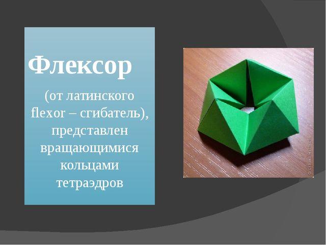 Флексор (от латинского flexor – сгибатель), представлен вращающимися кольцам...
