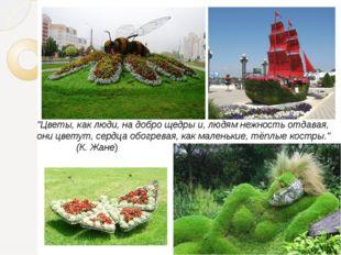"""""""Цветы, как люди, на добро щедры и, людям нежность отдавая, они цветут, сердц"""