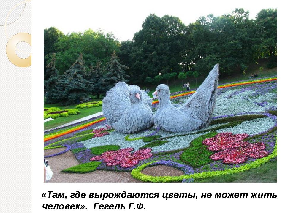 «Там, где вырождаются цветы, не может жить человек». Гегель Г.Ф.