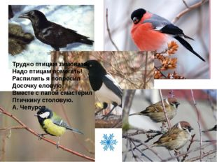 Трудно птицам зимовать, Надо птицам помогать! Распилить я попросил Досочку е