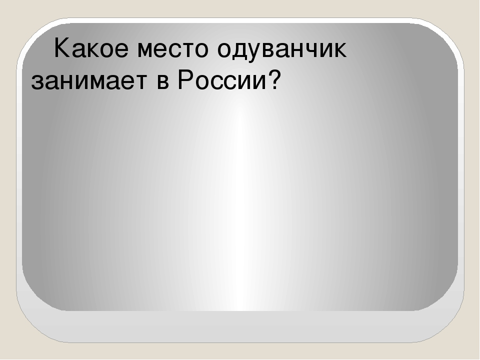 Какое место одуванчик занимает в России?