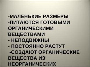 -МАЛЕНЬКИЕ РАЗМЕРЫ -ПИТАЮТСЯ ГОТОВЫМИ ОРГАНИЧЕСКИМИ ВЕЩЕСТВАМИ - НЕПОДВИЖНЫ -
