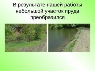 В результате нашей работы небольшой участок пруда преобразился
