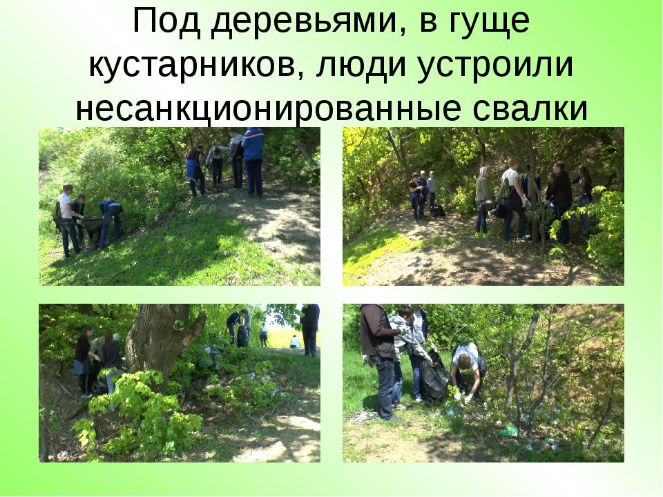 Под деревьями, в гуще кустарников, люди устроили несанкционированные свалки