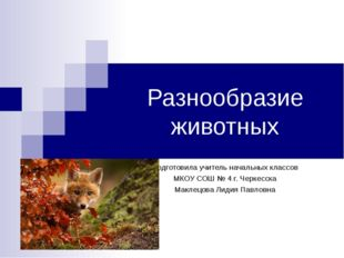 Разнообразие животных Подготовила учитель начальных классов МКОУ СОШ № 4 г. Ч