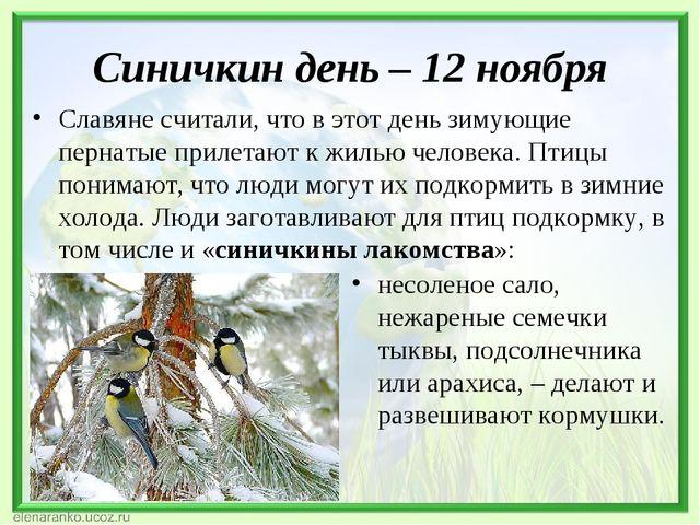 Синичкин день – 12 ноября Славяне считали, что в этот день зимующие пернатые...