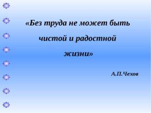 «Без труда не может быть чистой и радостной жизни» А.П.Чехов